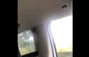 女の子たちでドライブ♪車内に毒グモ発見で阿鼻叫喚のパニックドライブへ