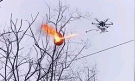ワイルドだろぅ?ドローンに火炎放射器装備でススメバチの巣を駆除してやったぜぇ~