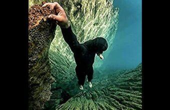 海洋恐怖症の人きて!どの画像が怖い???